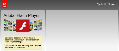 welcher adobe flash player ist installiert